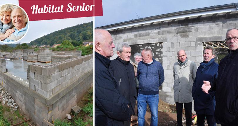 7 pavillons dédiés aux seniors sortent de terre à Guerting