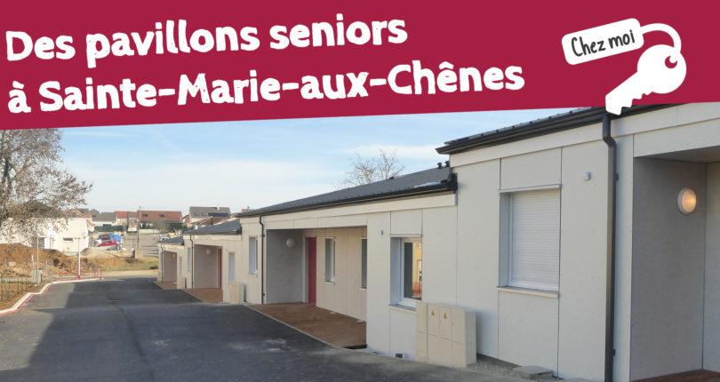 Sainte-Marie-aux-Chênes : 14 pavillons « printaniers »