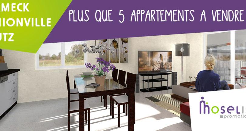 Profitez de nos derniers appartements à vendre dans le neuf !